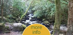 Contact Irish Travel Plans